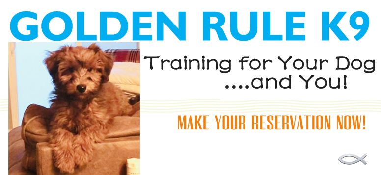 GOLDEN RULE K9 - THE COST OF NOT TRAINING - SPOKANE, WA